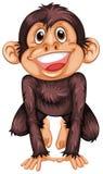 Chimpanzee. Illustration of a single chimpanzee Royalty Free Stock Images