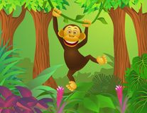 Chimpanzee in the jungle Stock Photography