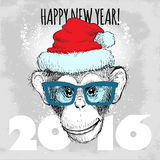Chimpanzee monkey Hipster with blue glasses and Christmas hat. Stock Image