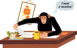 Chimpanzee sitting at office table Royalty Free Stock Image