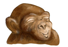 Chimpanzee with smiley face Royalty Free Stock Photos
