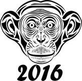 Chimpanzee. Vintage illustration, engraved retro style, hand drawn, sketch Royalty Free Stock Photography