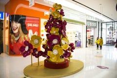 Chinês asiático, Pequim, plaza de compra da cidade das rifas Fotos de Stock