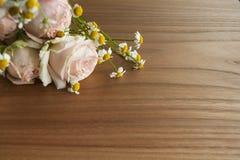 Chinês cor-de-rosa e ramalhete da margarida Fotografia de Stock Royalty Free