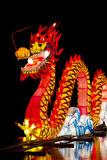 Chinês Dragon Lantern Imagens de Stock