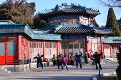 Chinês Kung Fu no parque do Pequim imagens de stock royalty free