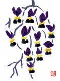 Chinês Plum Blossom - um dos quatro cavalheiros - desenho da tinta Fotografia de Stock Royalty Free