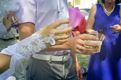 Chin chin at wedding Royalty Free Stock Photography