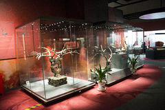 China Ásia, Pequim, o museu principal, chinês antigo, Chu Culture Exhibition Imagens de Stock Royalty Free