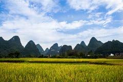 China Fotografía de archivo