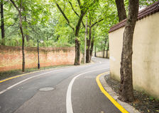 China Alley. Among green trees in an alley , full of relaxed atmosphere Royalty Free Stock Photography