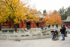 China, Asia, Beijing, the Fragrant Hill Park Royalty Free Stock Images