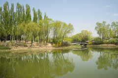 China Asia, Beijing, the Olympic Forest Park, garden landscape Royalty Free Stock Image