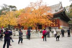 China, Asia, Pekín, el parque fragante de la colina foto de archivo libre de regalías