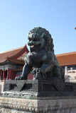 China. Beijing. The bronze lion statue in Forbidden City Royalty Free Stock Photos