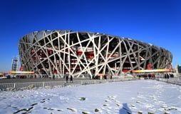 China beijing olympic national stadium Royalty Free Stock Photo