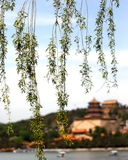 China Beijing Summer Palace, Tower of Buddhist Incense Stock Photo