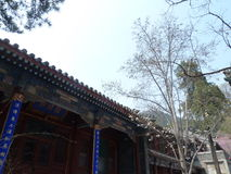 China beijing tanzhe temple Royalty Free Stock Photo