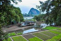 China Boerhuis en tuin op de rivierbank Royalty-vrije Stock Foto