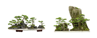 China bonsai Royalty Free Stock Photography