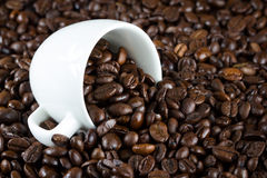China bowl with coffee beans stock image