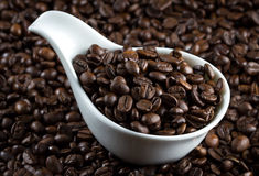 China bowl with coffee beans. White china bowl with roasted coffee beans royalty free stock image