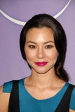 China Chow Royalty Free Stock Images
