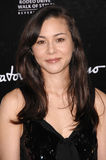 China Chow Stock Photography