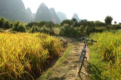 China country landscape with bicycle Royalty Free Stock Photos