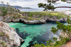 Point Lobos State Natural Reserve Royalty Free Stock Photos
