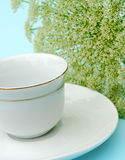 China cup and saucer with gold band. White cup and saucer with fresh flower in background Stock Image