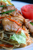 China delicious food—pork and noodles stock photos