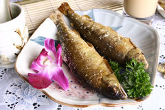 China delicious food--fried fish Royalty Free Stock Photo