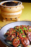 China delicious food-- soft-shelled turtle and goo stock image