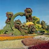 China display at Mosaicanada Royalty Free Stock Photography