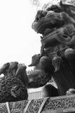 China - dragão Imagens de Stock Royalty Free