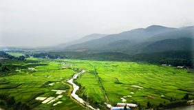 China field planting royalty free stock photography