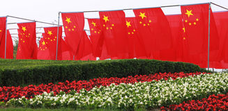 China flags and flowers Stock Image