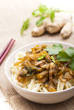 China food - noodles Royalty Free Stock Image