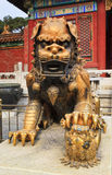China Forbidden city lion vertical. Close up frontal view of bronze gold plated imperial lion statue at Forbidden city palace in Beijing stock photos