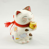 China Fortune Cat Stock Photos
