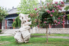 China Garden Stock Photography