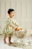 China girl push out the cradle. The girl push out the cradle Stock Photos