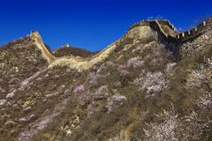 China great wall Royalty Free Stock Image