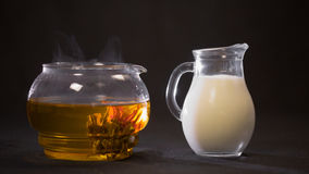China green blooming tea Bud in a glass teapot. Milk in a small jug on b Royalty Free Stock Image