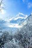 China Hailuogou Glacier Royalty Free Stock Photo
