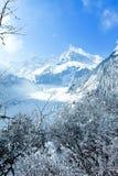China Hailuogou Glacier royalty free stock photo