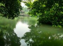 China Hangzhou neun Ströme, longjing Lizenzfreie Stockfotografie