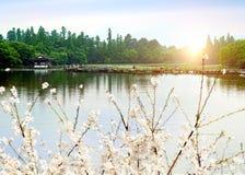 China Hangzhou West Lake landscape Royalty Free Stock Images