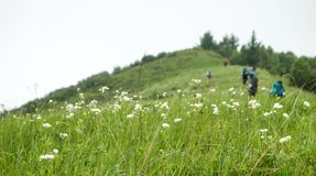 China Hebei Heilongshan Meadow footing Landscape Royalty Free Stock Photography